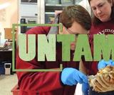 Wildlife Research   UNTAMED   Wildlife Center of Virginia