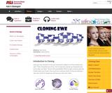 Cloning Ewe