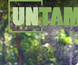 One Health | UNTAMED | Wildlife Rehabilitation Careers