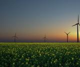 Alternative (Renewable) Energy Resources Slides Project