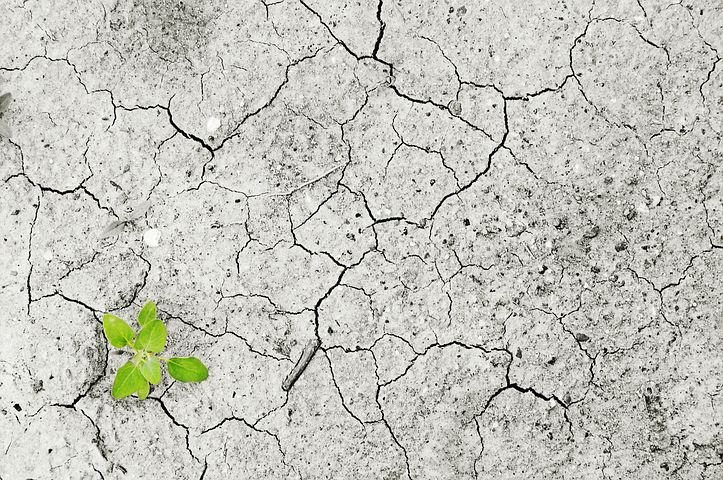 Water Scarcity- Change the Course