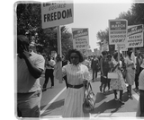Civil Rights Sorting Cards